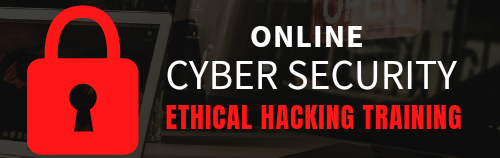 Ethical Hacking Training In India